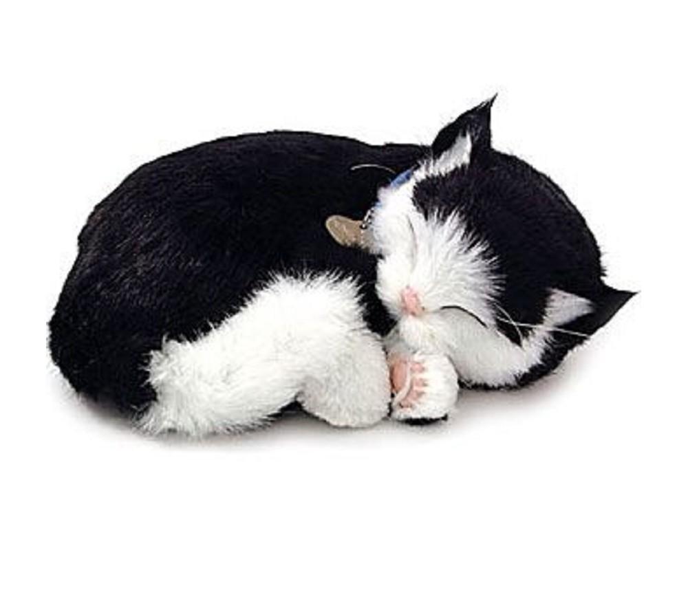 d6e2bf4e Kosedyr, sort og hvit katt som puster | Sprell - veldig fine leker ...