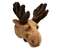 Elg, dyrehode - Brigbys