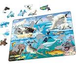 Arktiske dyr - Puslespill