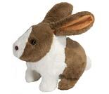 Kanin som kan hoppe, rynke på nese og vifte ører