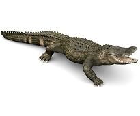 Alligator miniatyrfigur - Papo