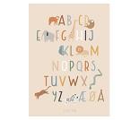 Plakat med alfabetet, 50x70 cm fra Sebra