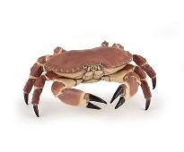 Krabbe miniatyrfigur - Papo