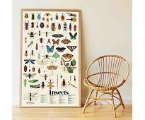 Plakat og klistremerker, insekter - Poppik